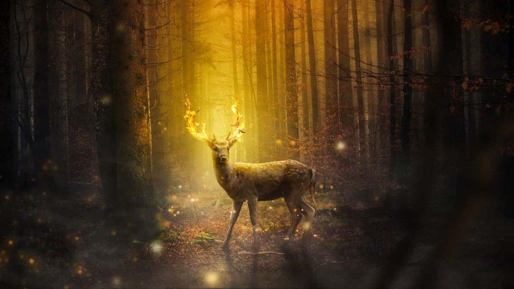 Rudolph, iconos gais